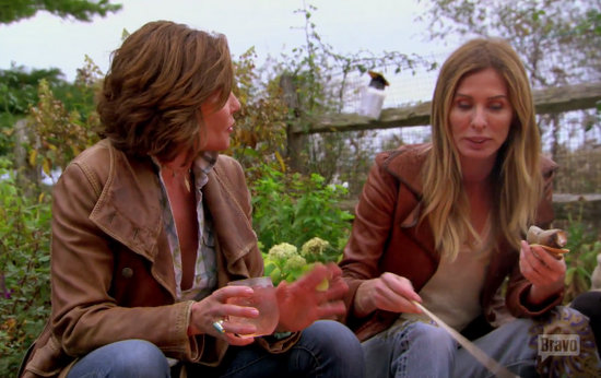 carole and luann chat