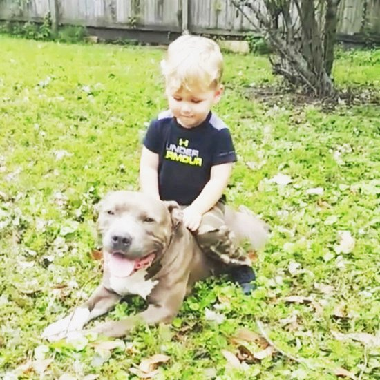 Reality TV Stars Family Pics - Jenelle Evans son Kaiser sits on dog