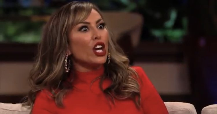 Kelly Dodd Wants To Leave Real Housewives Of Orange County Because Of Vicki Gunvalson Drug Accusations; Gina Kirschenheiter & Emily Simpson Shade Vicki On Instagram