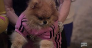 Vanderpump-Rules-Giggy-Vanderpump