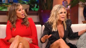 "Tamra Judge, Shannon Beador & Vicki Gunvalson Call Kelly Dodd ""A Train Wreck"" And ""Not A Kind Person"""