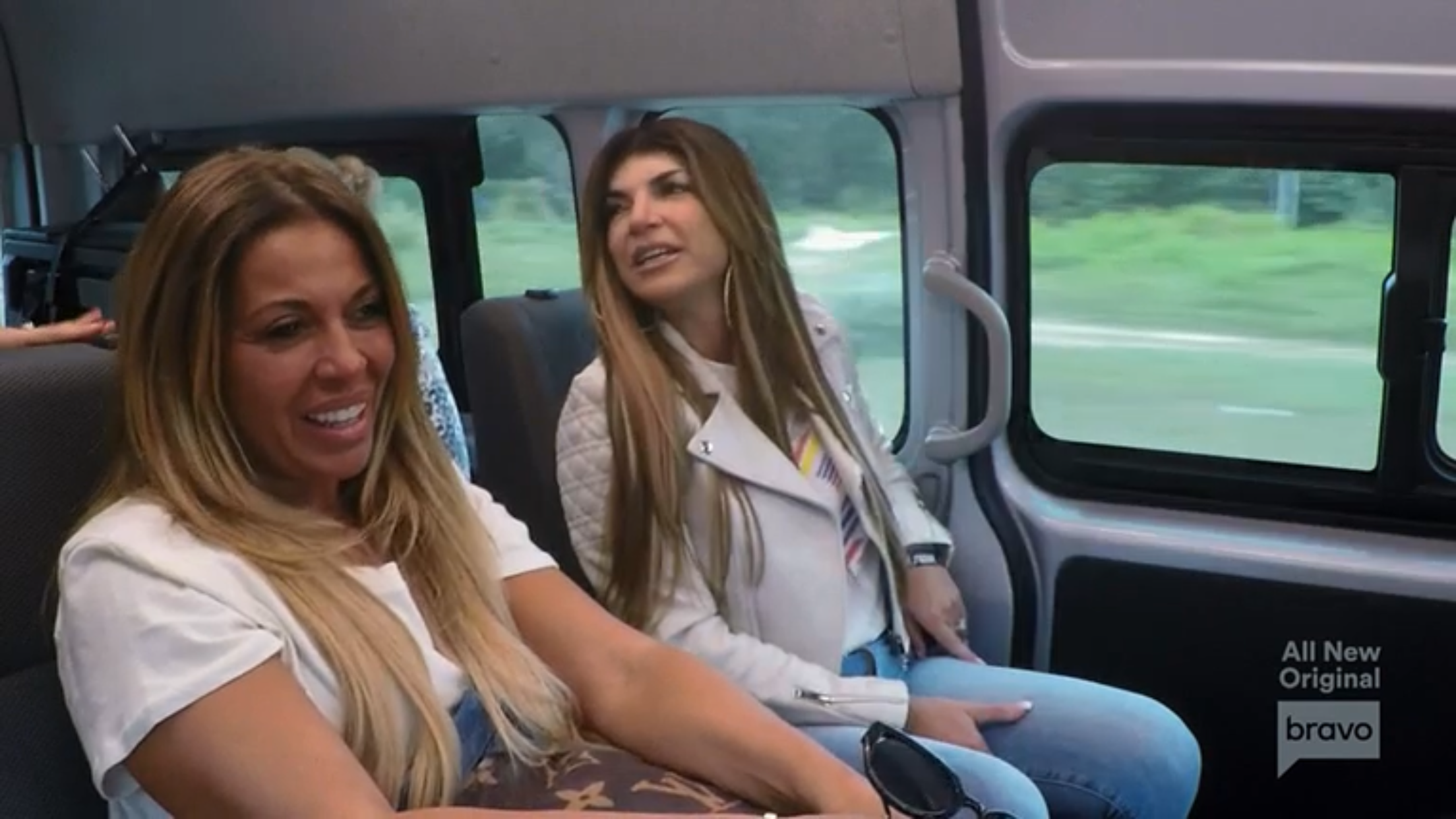 Dolores Catania Teresa Giudice Real Housewives Of New Jersey