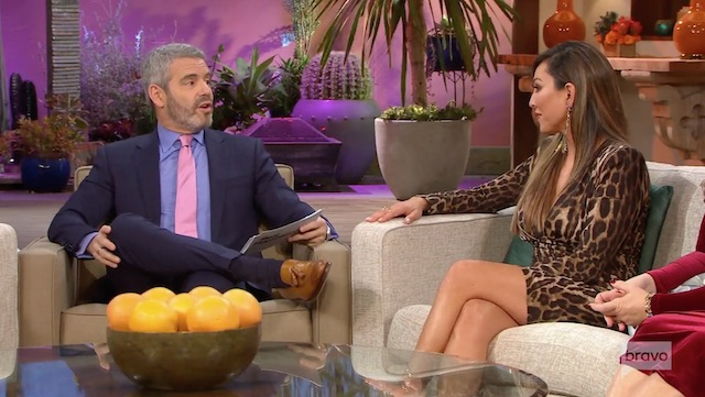 Kelly Dodd Andy Cohen Real Housewives Of Orange County
