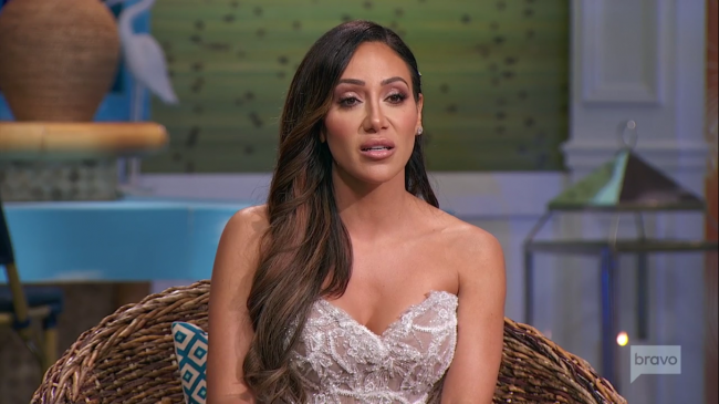 Melissa Gorga Real Housewives Of New Jersey